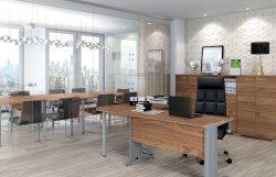 Ganibu dambis 23a mebeles. Комплект офисной мебели. Optimal 3 офисный комплект