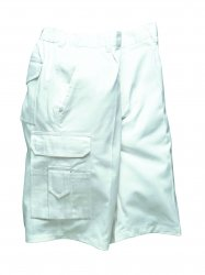 Workwear for Painting and Plastering Jobs - Painters Shorts